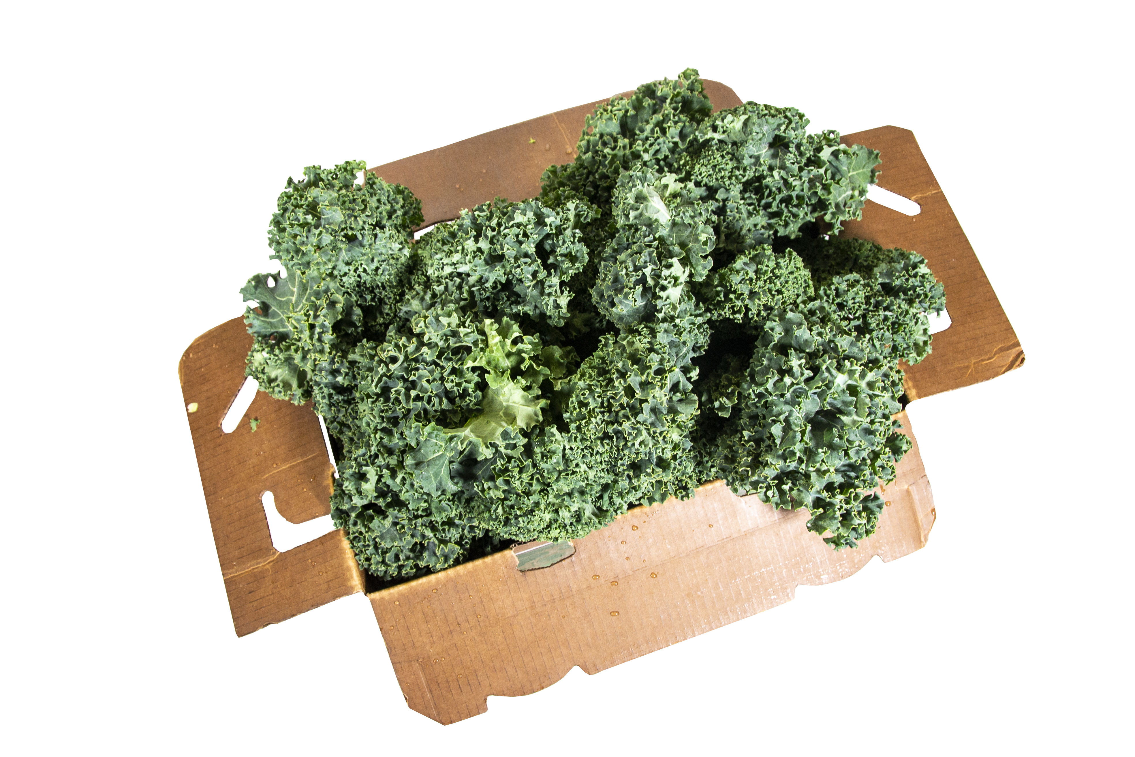 kale-box-2